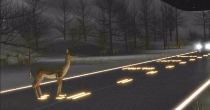 太陽能馬路