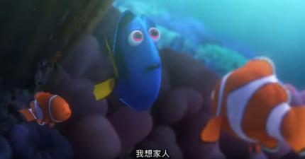 大人也瘋狂《海底總動員2》新版中文預告出爐!我沒有想到多莉最好的朋友居然是個殺人魔!
