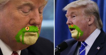 藝術家看到「川普嘴巴其實是青蛙」,被實體化後全部美國人再也回不去了... (15張)