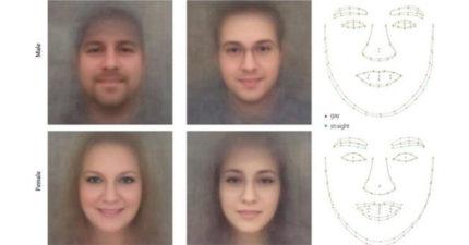 最新人工智慧「光看臉」兩個特徵就能判斷你是否同性戀!外媒:殺人工具。