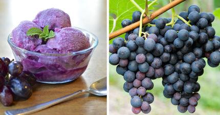 為何市面上都沒有「葡萄口味冰淇淋」?知名廠商曝「很難」原因