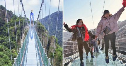 「世界最長玻璃橋」又是在中國!全長488公尺、66層樓高,從側邊看狂到讓你想嘔吐!