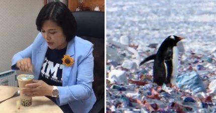 還在糾結湯匙喝珍奶?南極企鵝現正群居「發光黑塑膠島」