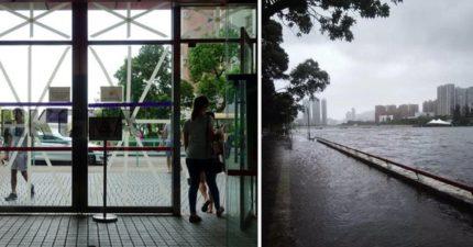 這就是山竹颱風真面目 甩過港澳「直接上演世界末日」玻璃全炸飛