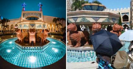 東京迪士尼驚現遊客「在噴水池泡腳」!「遊客身份」被揭開後網傻眼:竟不是強國人