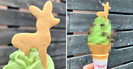 去奈良必吃的「鹿屎抹茶冰淇淋」爆紅 棕色「視覺衝擊」網驚呆:隔著螢幕也能聞到