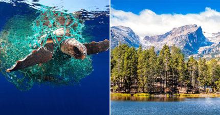 研究發現「世界最偏遠地區」不保 洛磯山脈雨水「有塑膠廢料」!