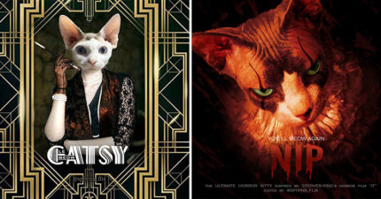 20張「如果貓咪主演」的經典電影海報 貓版《大法師》一看就讓你嚇破膽!