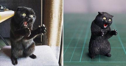 日本「動物梗圖實體化」再推全新力作 神還原「超萌尬笑貓」隔著螢幕都尷尬!