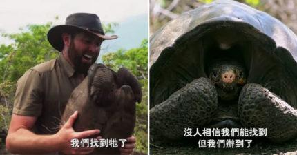 影/全球唯一「費南迪納巨陸龜」再度出現 團隊找到「消失112年物種」超驚喜!