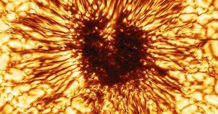 比地球更大!史上最清晰「太陽黑子」曝光 網歪樓:撞臉某「魔王」