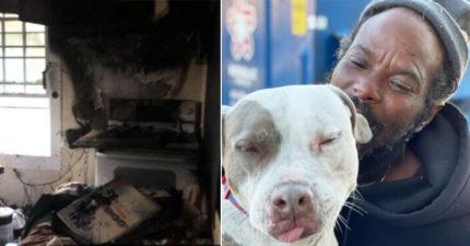 收容所失火「所有動物奇蹟生還」都因這位街友 他:我拒絕所有援助