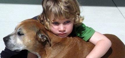 這就是為什麼狗活得比人類短。6歲孩童的超完美解答!