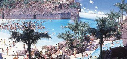 如果你覺得這只是一個普通的海灘度假村,再看近一點。這你就是你夢寐以求的天堂!