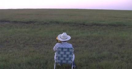 男子吹長號給牛聽