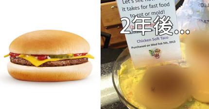 放了2年的速食店漢堡到底會腐爛到什麼程度?結果會讓你非常吃驚。