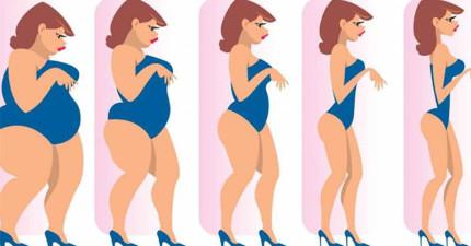 8個超中肯原因為什麼你不管怎麼樣都瘦不下來。(不是因為體質)