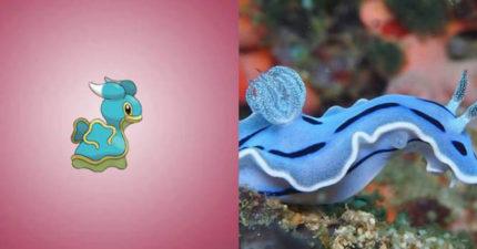 12種「神奇寶貝的真實動物靈感」證明神奇寶貝其實是個紀錄片!#8沒想到現實中真的有蚊香蝌蚪!