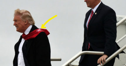 準總統川普下飛機時攝影師拍到了這張照片,網友看到亮點都開時發瘋狂笑了!