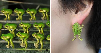 設計師打造「超逼真青蛙飾品」爆紅 她曝光「參考範例」嚇壞網友:真的完美還原!