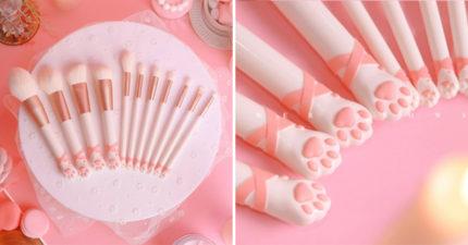 超可愛「貓掌刷具」每天化妝都被「超軟嫩肉球萌殺」 還有黑色美戰款!