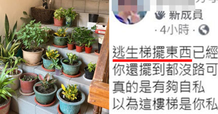 逃生梯爽擺「5排盆栽」 網怒嗆:以為是開心農場?