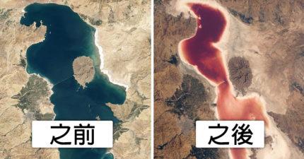 北極熊入侵城市!18張照片證明「地球氣候恐怖劇變」